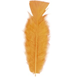 50 pieces of small feathers orange