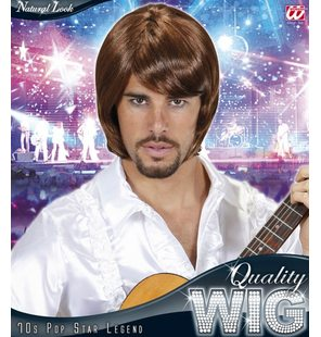 70s Pop Star Bjorn Wig brown