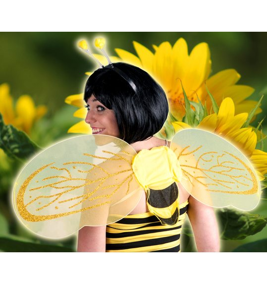 Bee set (wings + stick)