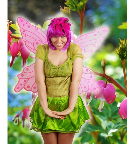 Big butterfly or fairy wings pink