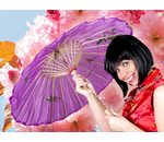 Chinese umbrella purple