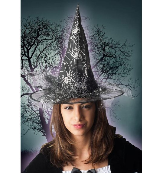 Silver witch hat with spider web print