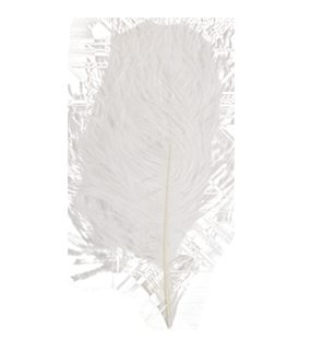 Austrich feather 28-32cm