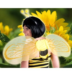 Bee sets of headgear and wings