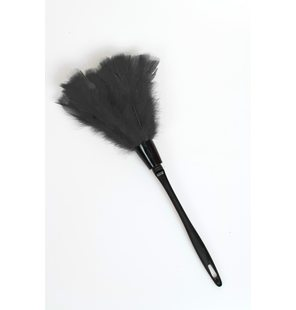 Black feather duster