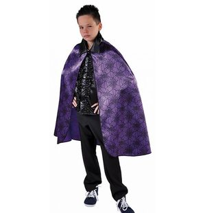 Cape Satin Spider Purple