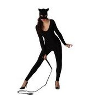 Costume Cat superhero