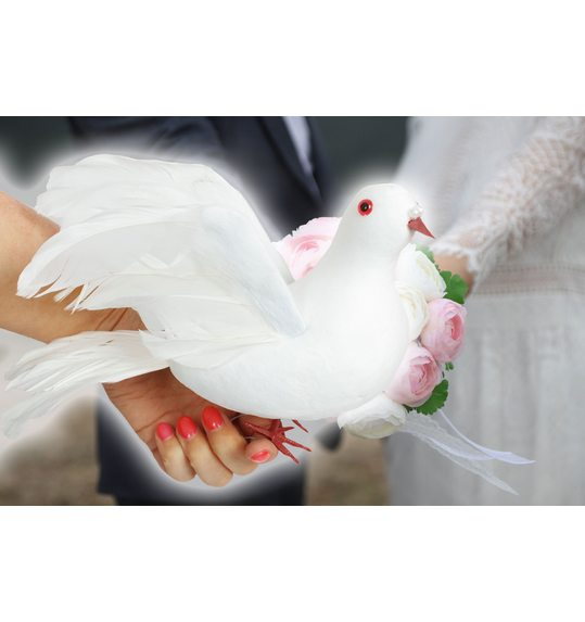Wedding dove decoration