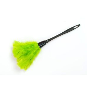 Green feather duster