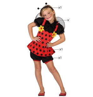 Ladybug girl fancy dress costume