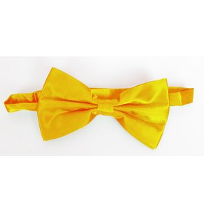 Light orange bow tie